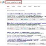Mozbar search 1