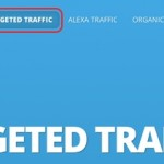 How to Get Human Targeted Web Traffic