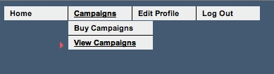 FWtraffic Control Panel - view campaigns
